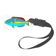 Belted Wrasse C Luggage Tag
