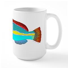 Belted Wrasse c Mugs