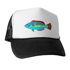 Belted Wrasse c Trucker Hat