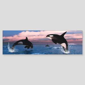 Killer Whales In The Arctic Ocean Bumper Sticker
