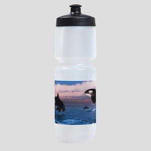Killer Whales In The Arctic Ocean Sports Bottle