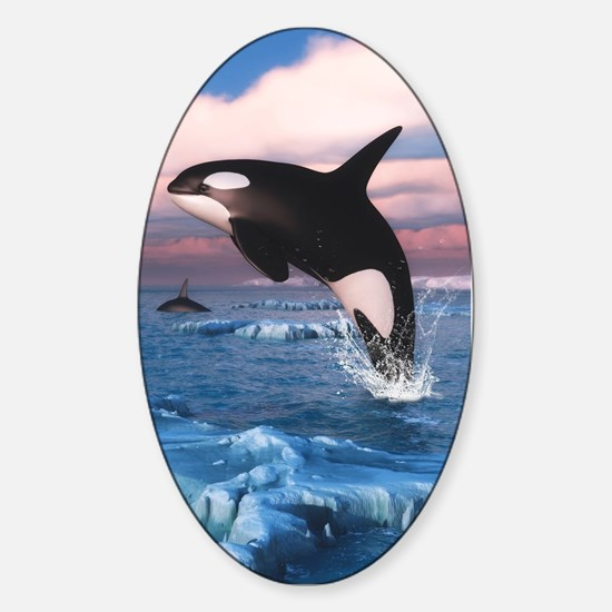 Killer Whales In The Arctic Ocean Decal