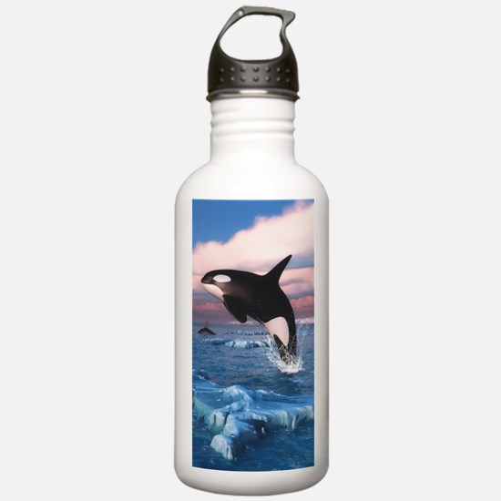 Killer Whales In The Arctic Ocean Water Bottle