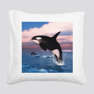 Killer Whales In The Arctic Ocean Square Canvas Pi
