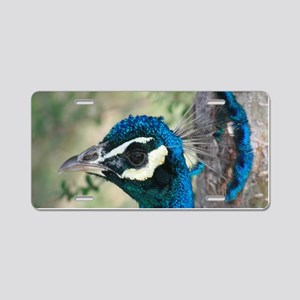 Peacock Blue Head with Crow Aluminum License Plate
