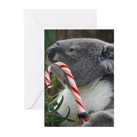 Christmas koala candy cane greeting cards by admincp11899450 m4hsunfo