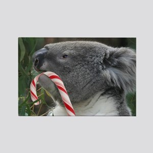 Christmas Koala Candy Cane Magnets