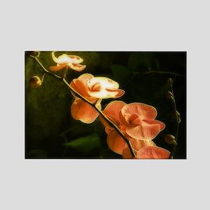 orange orchid lg Magnets