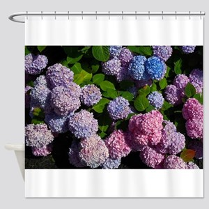 purple, blue, and pink hydrangeas rectangle Shower