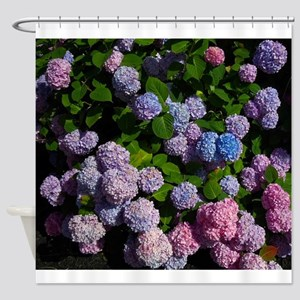 purple, blue, and pink hydrangeas Shower Curtain