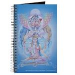 Higher Consciousness Journal