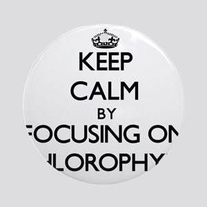 Keep Calm by focusing on Chloroph Ornament (Round)