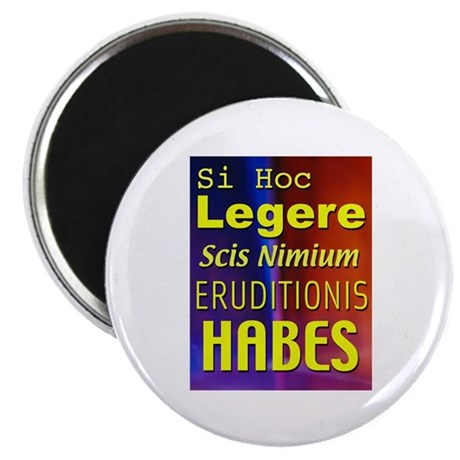 Overeducated - in latin Magnet (10 pk)