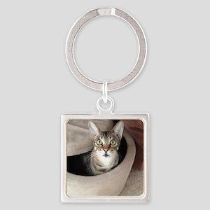 Occupied Cat Keychains