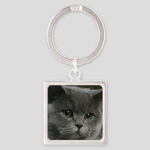 Blue British Shorthair cat Keychains