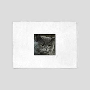 Blue British Shorthair cat 5'x7'Area Rug