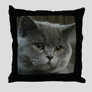 Blue British Shorthair cat Throw Pillow