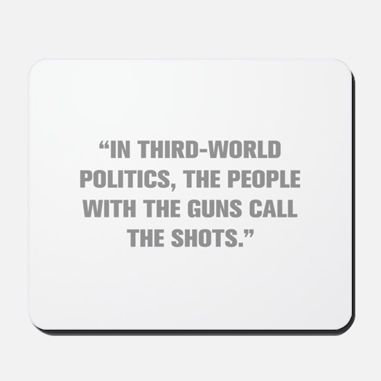 IN THIRD WORLD POLITICS THE PEOPLE WITH THE GUNS C