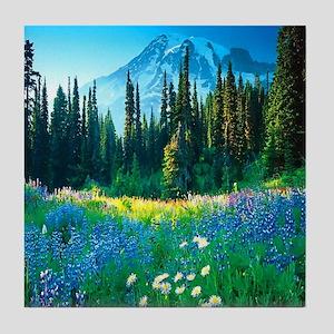 Scenic Mountain Tile Coaster