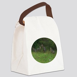 RED FOX AND KITS Canvas Lunch Bag