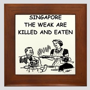 singapore Framed Tile