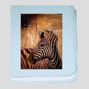 wild zebra safari baby blanket