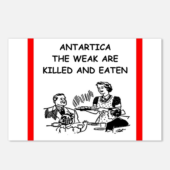 antartica Postcards (Package of 8)