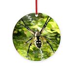 Garden Spider Awaits sq Ornament (Round)