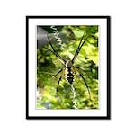 Garden Spider Awaits sq Framed Panel Print