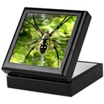Garden Spider Awaits sq Keepsake Box