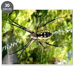 Garden Spider Awaits sq Puzzle