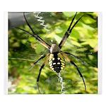 Garden Spider Awaits sq King Duvet