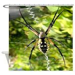 Garden Spider Awaits sq Shower Curtain