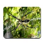 Garden Spider Awaits sq Mousepad