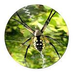 Garden Spider Awaits sq Round Car Magnet