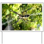 Garden Spider Awaits sq Yard Sign
