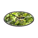 Garden Spider Awaits sq Patches
