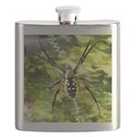 Garden Spider Awaits sq Flask