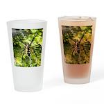 Garden Spider Awaits sq Drinking Glass