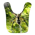 Garden Spider Awaits sq Bib