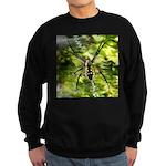 Garden Spider Awaits sq Sweatshirt