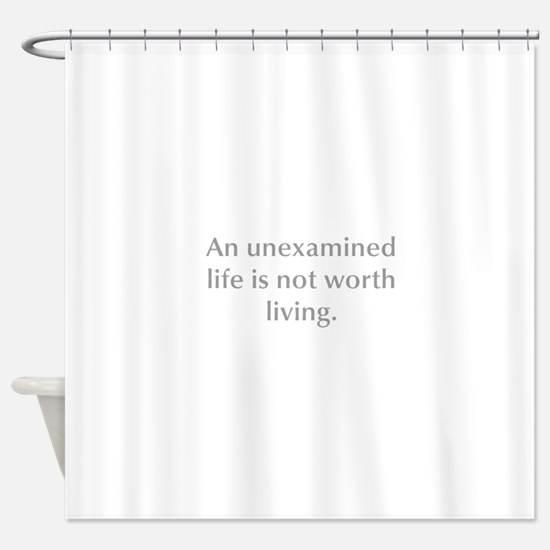 An unexamined life is not worth living Shower Curt