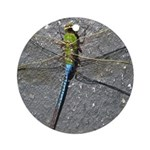 Dragonfly on Pavement Ornament (Round)