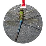 Dragonfly on Pavement Ornament
