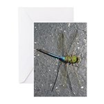 Dragonfly on Pavement Greeting Cards