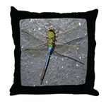 Dragonfly on Pavement Throw Pillow