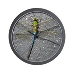 Dragonfly on Pavement Wall Clock