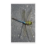 Dragonfly on Pavement 3'x5' Area Rug