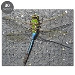 Dragonfly on Pavement Puzzle