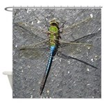Dragonfly on Pavement Shower Curtain